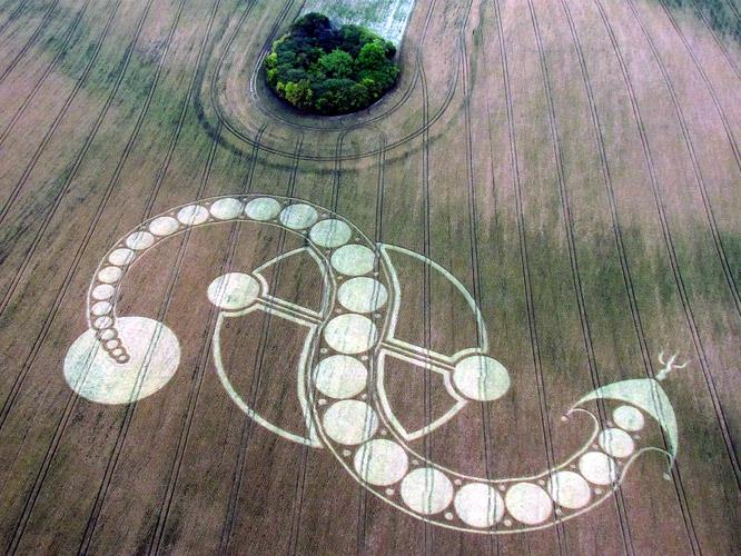 crop circles 2019 IMG0223